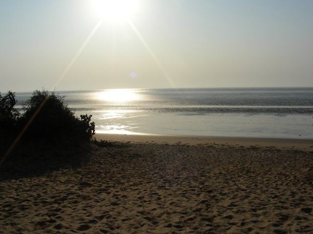 beach6 ΠΑΡΑΛΙΕΣ