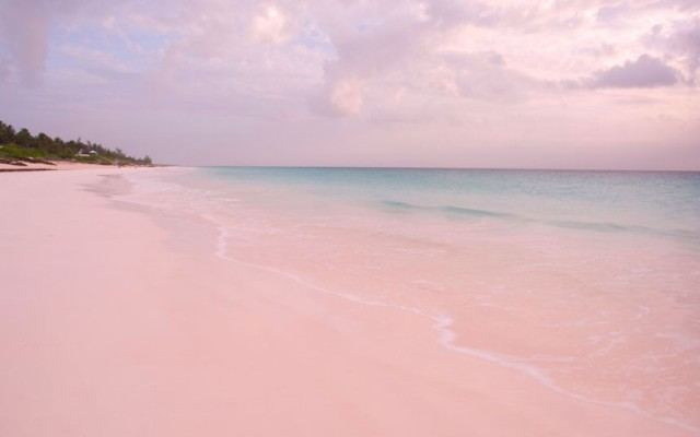beach93 ΠΑΡΑΛΙΕΣ