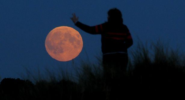 red ΠΑΝΣΕΛΗΝΟΣ Wolf Moon 2018